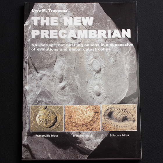 The New Precambrian